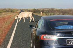 Tesla 3,300-mile Australian camping trip