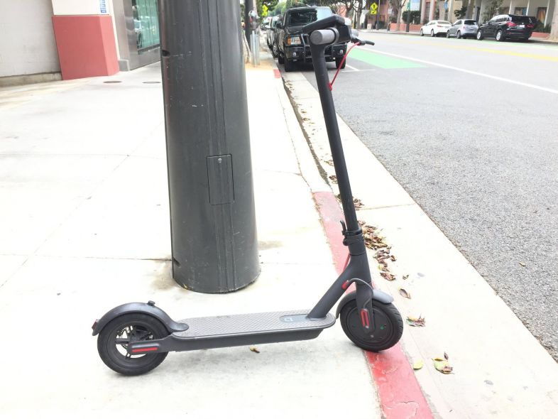 bird-scooter-los-angeles-electric-vehicle-share.jpg